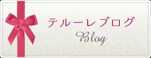 テルーレブログ